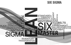 Six Sigma Program